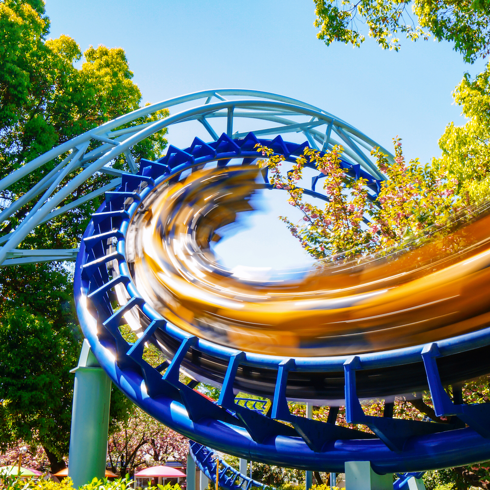 What Roller Coasters Can Teach Us About Economics