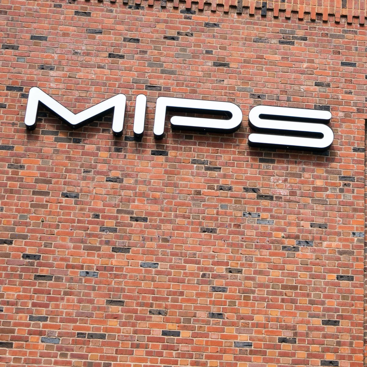 Loose Lips Sink MIPS
