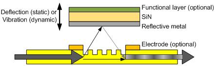 Figure_2_441.png
