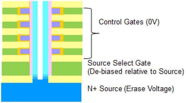 Figure_5_Erase.png